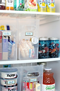 CleanRefrigeratorOrganization_22